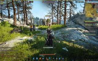 Игроки Black Desert с транспарантами бастуют на улицах виртуальных городов