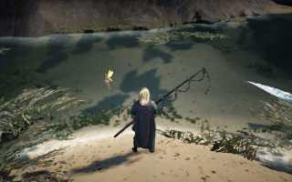 Гайд по рыбалке в Black Desert
